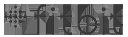 Fitbit logo in MOK Capital Advisors grey palette